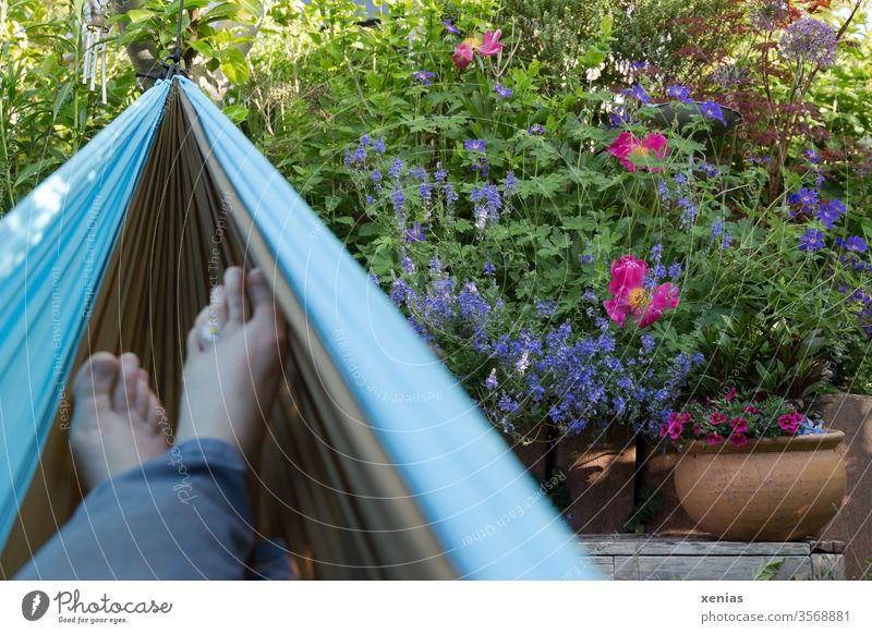 Aus der erholsamen Hängematte: Blick auf Blumen im Garten und Füßen mit Gänseblümchen Entspannung Pfingstrose Ehrenpreis Blumentopf Erholung Freizeit Lifestyle