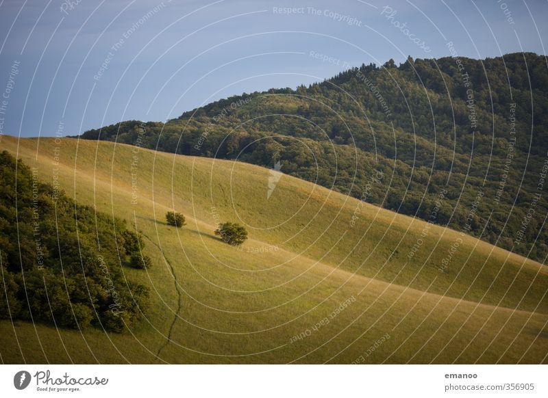 Kaiserstuhl Himmel Natur Ferien & Urlaub & Reisen grün Sommer Pflanze Baum Landschaft Wald Umwelt Berge u. Gebirge Wiese Gras Wege & Pfade Wetter Klima