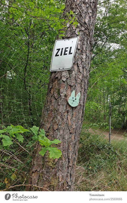 Ziel in Sicht Schilder & Markierungen Beschriftung Buchstaben Baum Wald Weg Hasenohren Spaß haben Bewegung Schriftzeichen Menschenleer Hinweisschild