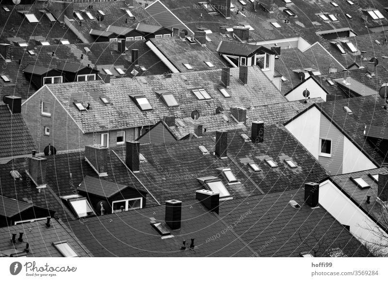 über den Dächern Dach Dächerlandschaft Dachziegel Schornstein Dachrinne Dachgiebel Dachfenster Dachgeschoss Dachfirst Dachgebälk Dachboden Dachterrasse