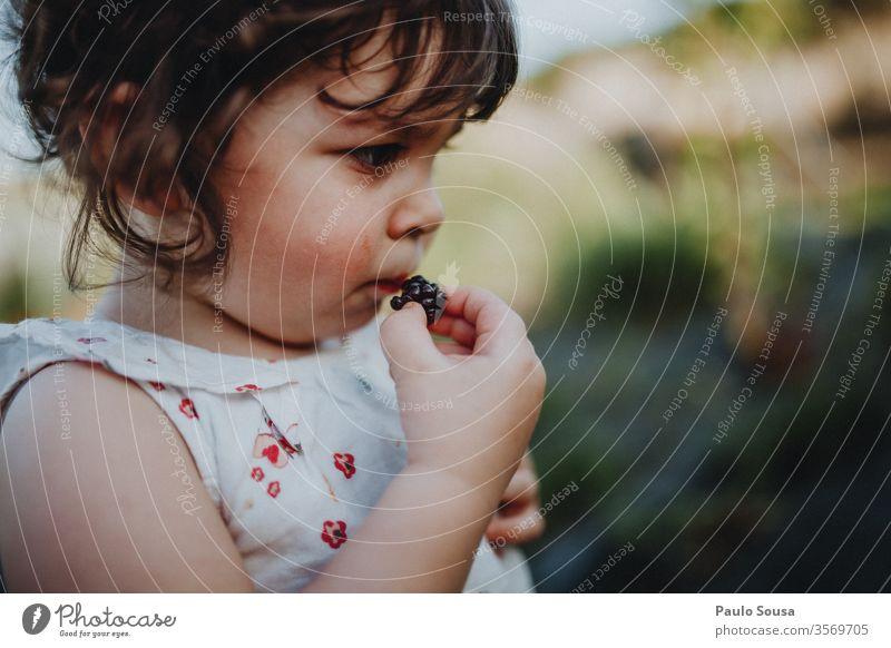 Kleines Mädchen isst Brombeeren Brombeerbusch Kind Bioprodukte organisch Gesundheit Gesunde Ernährung Lifestyle Kaukasier Diät lecker Blaubeeren Nahaufnahme