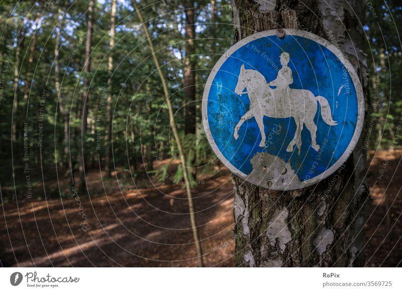 Reitweg in der Lüneburger Heide. landschaft lüneburg pfad pferd horse reiten reiter riding natur herbst winter jahreszeit witterung landscape schild
