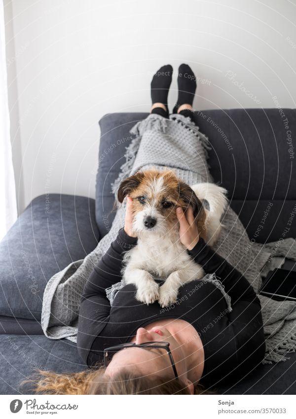 Junge Frau liegt auf dem Rücken und streichelt einen kleinen Terrier Hund auf einem grauen Sofa Dschungel streicheln Freundschaft liebe Haustier Tier Blick
