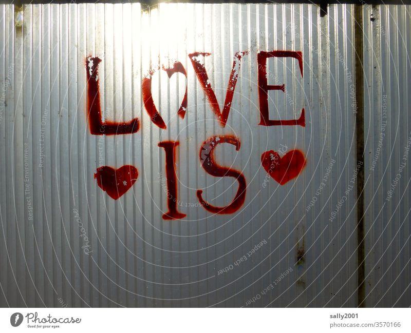 Liebe ist! Herz Symbol Schrift rot Graffiti Gefühl Gefühlsausdruck Liebeserklärung Plastikwand durchscheinend Sonne alt abgeblättert Schriftzug Schriftzeichen