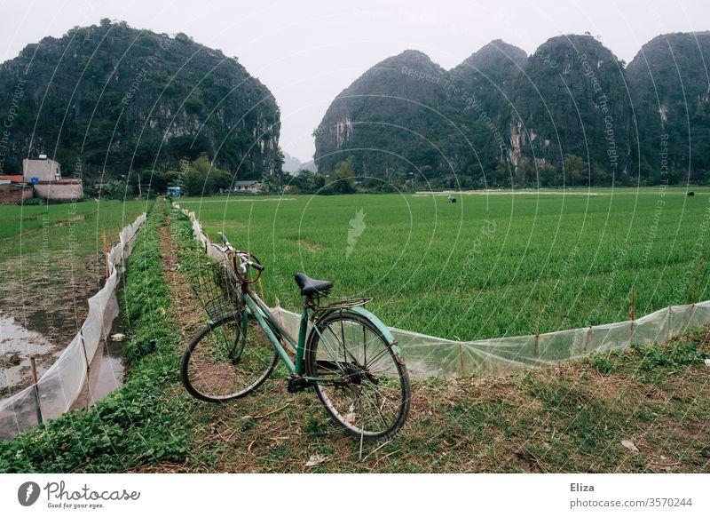 Ein Fahrrad vor Reisfeldern in Ninh Binh, Vietnam Asien Ferien & Urlaub & Reisen Landschaft asiatisch Natur Reisefotografie Landwirtschaft Reisanbau