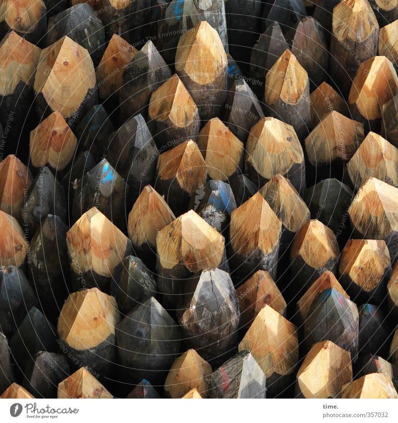 Vollversammlung Holz Business Arbeit & Erwerbstätigkeit Ordnung Energie Spitze Vergänglichkeit Wandel & Veränderung planen Baustelle Landwirtschaft Zusammenhalt