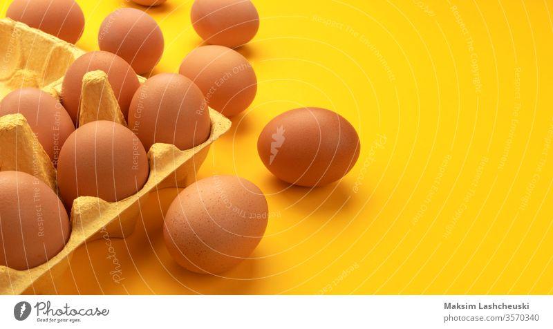Braune Hühnereier in Pappkarton auf gelbem Hintergrund braun Hähnchen Eier Karton Kasten Transparente frisch Bauernhof Kopie Raum Text organisch Lebensmittel