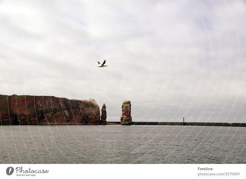 Lieblingsinsel - oder Helgoland von der Seeseite aus mit einem wunderbaren Blick auf die Lange Anna Felsen Wahrzeichen Außenaufnahme Farbfoto Menschenleer Tag