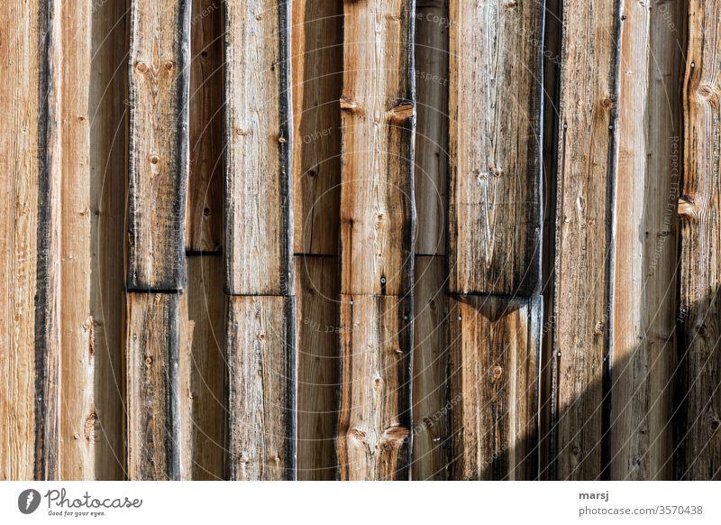 Bretterwand mit Schatten im unteren rechten Eck Holz Holzwand Wand Holzmaserung Schutz vertikale Strukturen geometrisch regelmässig Muster Holzbrett authentisch