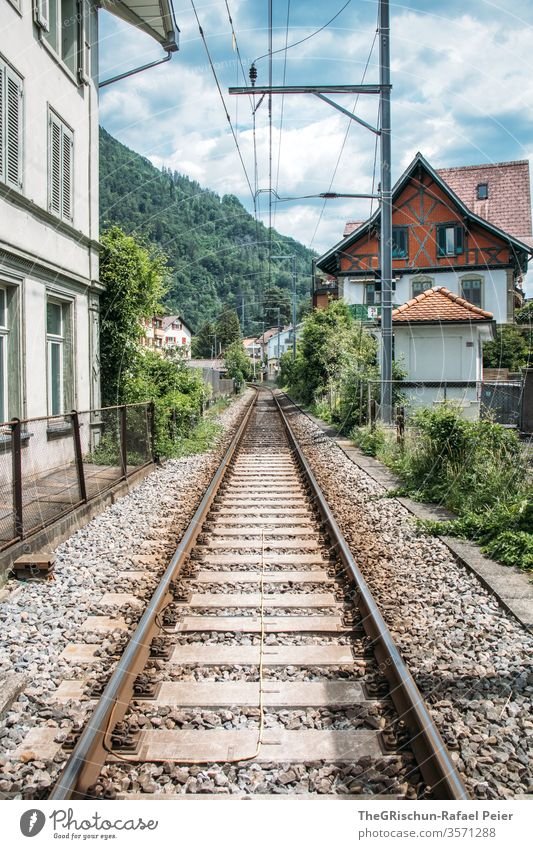 Blick auf ein Haus und Zugschienen Interlaken Schweiz Tourismus Baum Außenaufnahme Farbfoto Menschenleer Tag Ausflug Sommer Tourismusregion Gleise Schiene
