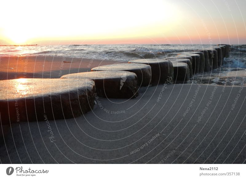 Atomic Sunset Umwelt Natur Sand Wasser Himmel Sonne Sonnenlicht Wetter Schönes Wetter Strand Nordsee Ostsee Meer gruselig Buhne Zingster Seebrücke Darß Farbfoto