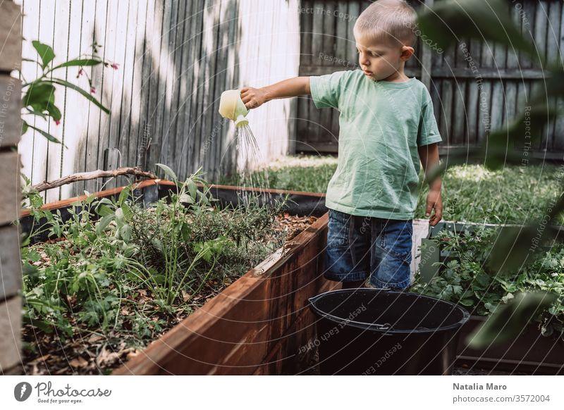 Ein kleiner Junge gießt Pflanzen im Garten. Konzept der Landwirtschaft und des Umweltschutzes Bewässerung Natur grün Leben Boden Ackerbau Frühling jung neu