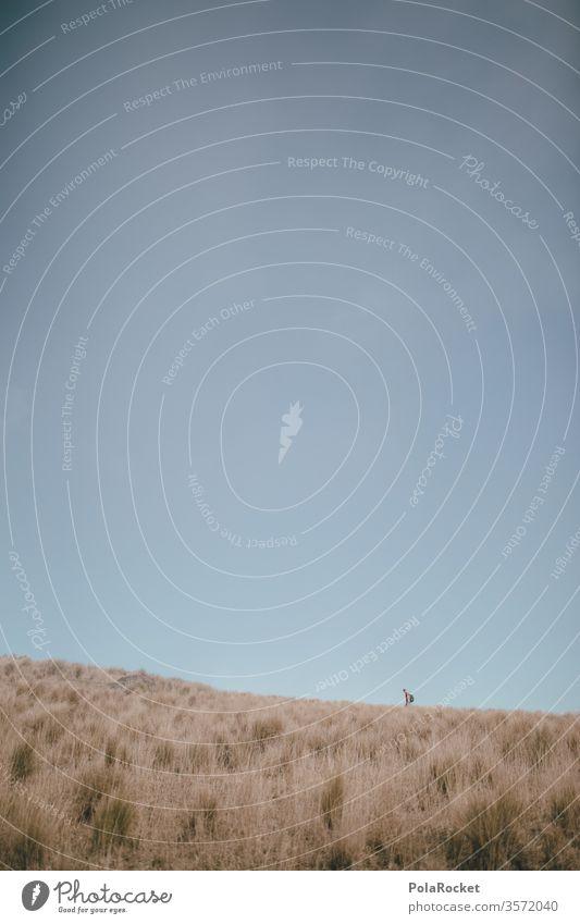 #As# On We Go wandern Wanderer Wandertag Wanderausflug Wanderung wanderlust wanderweg draußen Outdoor Berge u. Gebirge Neuseeland Neuseeland Landschaft Freiheit
