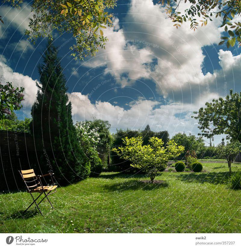 Im Garten Umwelt Natur Landschaft Pflanze Himmel Wolken Klima Wetter Schönes Wetter Baum Gras Sträucher Grünpflanze Klappstuhl Gartenstuhl Holz Erholung