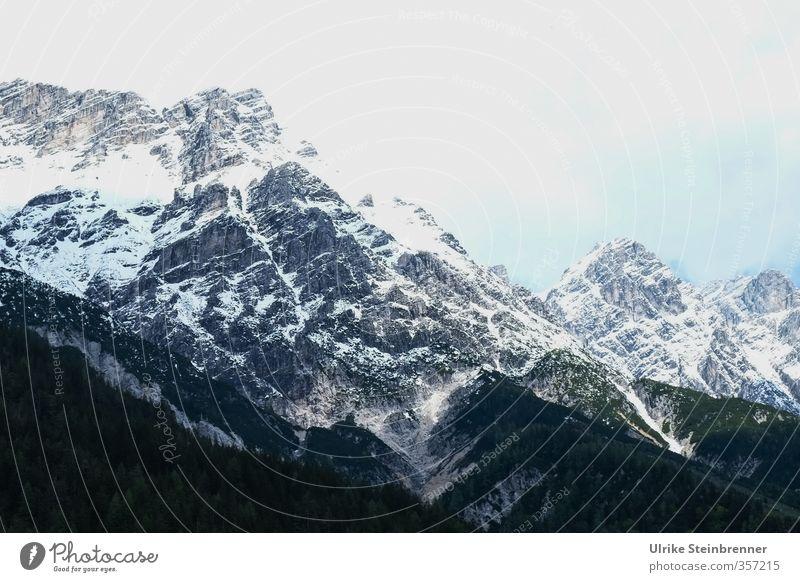 AST 6 Inntal / Neuschnee am Wilden Kaiser Umwelt Natur Landschaft Himmel Frühling Schönes Wetter Schnee Baum Wald Felsen Alpen Berge u. Gebirge
