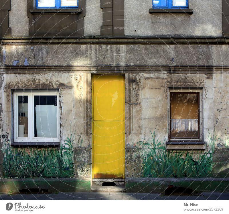 Kunst am Bau I Urbaner Garten Haus Gebäude Architektur Fenster Fassade Tür gelb Graffiti Eingang Hintereingang grau Kellerfenster trist Altbau Wandmalereien