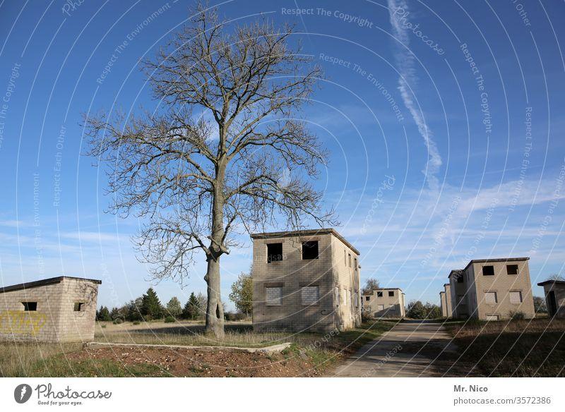 das tote Dorf Gebäude Haus Baum Architektur Geisterstadt Einsamkeit verfallen Unbewohnt heimatlos Flucht Kleinstadt Ruhe Hütte Truppenübungsplatz verlassen