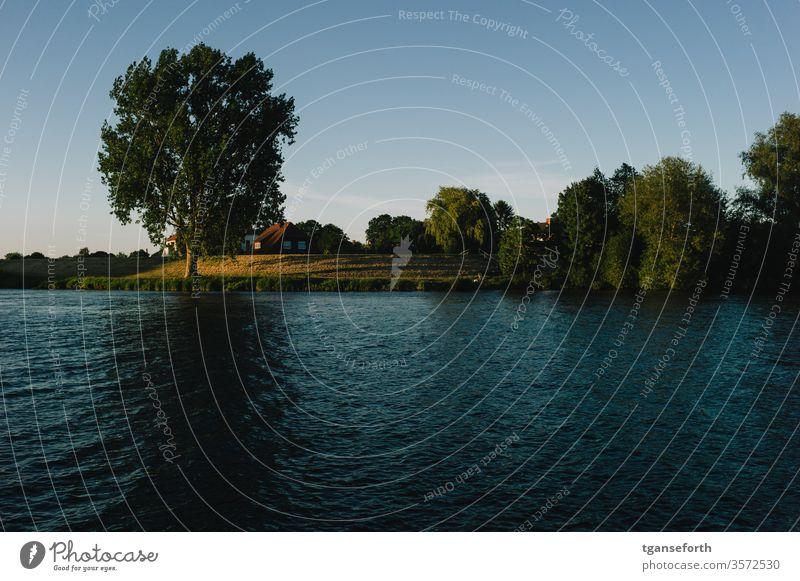 Abendstimmung an der Ems bei Papenburg Wasser Eiche Sonnenlicht Sonnenuntergang Außenaufnahme Dämmerung Farbfoto Stimmung Menschenleer Landschaft ruhig