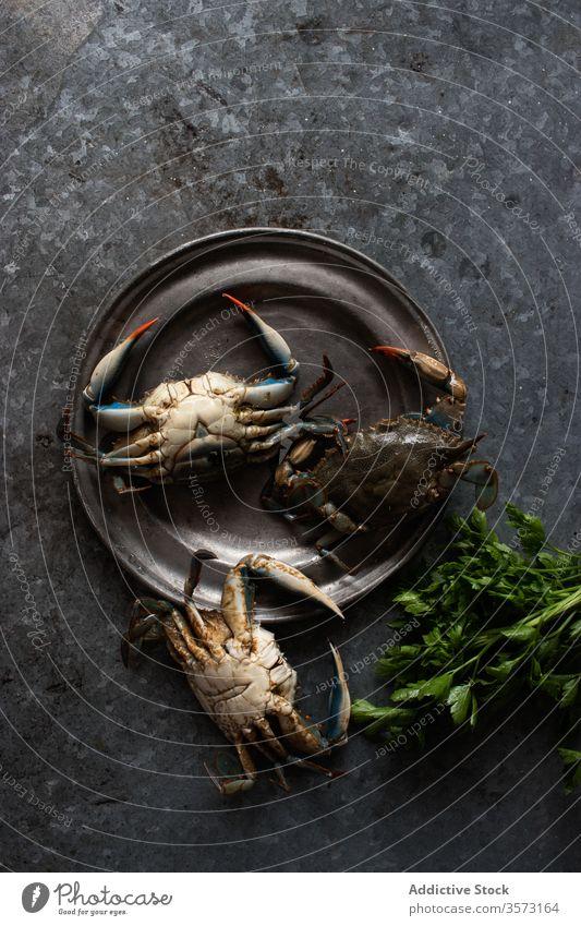 Krebse auf einer Metallplatte in der Nähe von frischer grüner Petersilie Krabben Speise Gastronomie Koch marin crabbing Feinschmecker vorbereitet tropisch