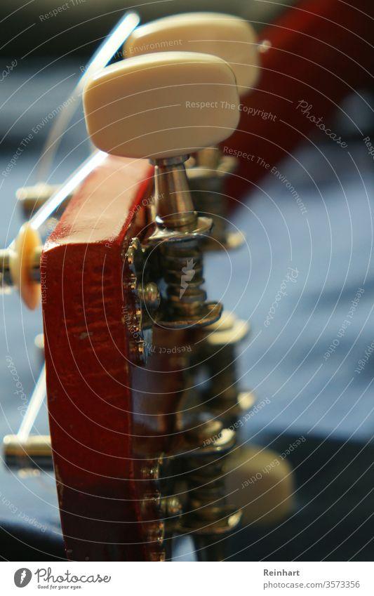Ukulele Lifestyle Spielen Instrument Freizeit & Hobby Musik Erholung Fröhlichkeit akustisch Schnur Streichinstrumente Zeichenketten ausgesteckt Holz Saite
