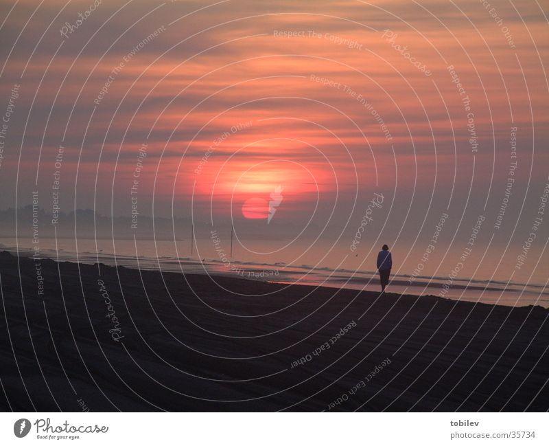 Sonnenaufgang am Meer Strand Wolken Einsamkeit dunkel Sand hell Treppe Stranddüne