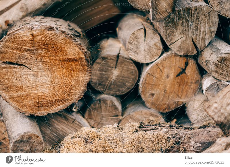 Gestapelte Holzscheite als Feuerholz Vorrat zum Heizen im Winter gestapelt braun Brennholz Baumstamm Forstwirtschaft Außenaufnahme Holzstapel heizen Brennstoff