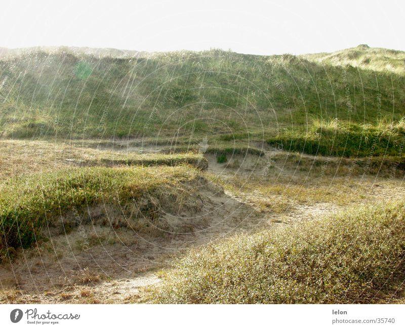 Dünen im Regen in Dänemark Sonne Sand Stranddüne