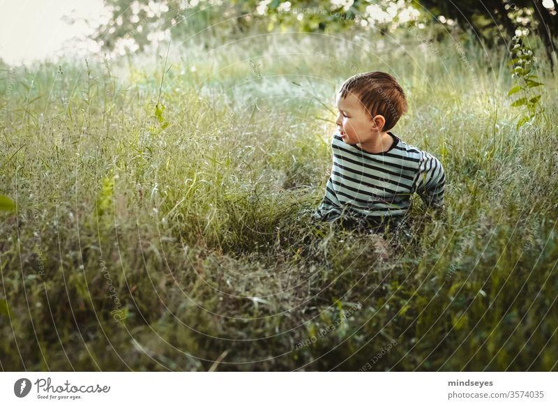 Kleiner Junge im Ringelpulli sitzt in einer Wiese Kind Mensch Porträt Freude Farbfoto Fröhlichkeit Kindheit Glück 3-8 Jahre Lebensfreude Spielen lächeln Gras