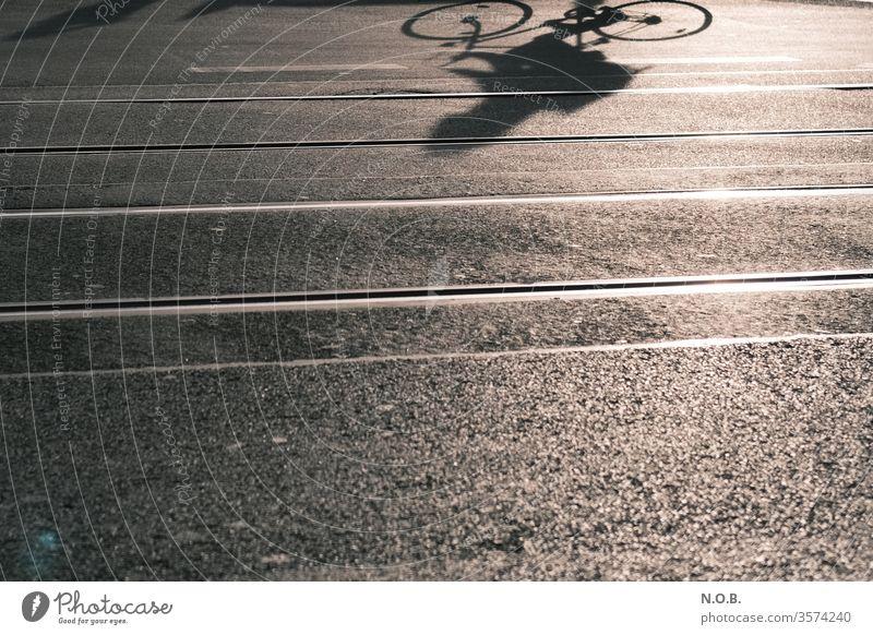 Schatten eines Fahrradfahrers auf dem Asphalt Fahrradfahren Straße Asphaltierung Gleise Außenaufnahme Freizeit & Hobby Verkehr Verkehrsmittel Stadt Tag Farbfoto