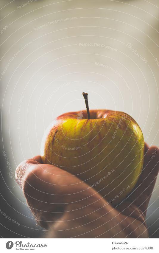 einen Apfel in der Hand halten haltend festhalten präsentieren gesund Ernährung Gesunde Ernährung Vitamine Vitamin B Vitamin A Obst frisch Gesundheit