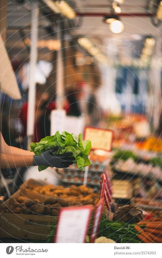Wochenmarkt - Verkäuferin hält frischen Salat in den Händen Marktplatz Karotten Möhren Tüte Kunden Hand Gemüse Marktstand nachhaltig gesund Bioprodukte Händler