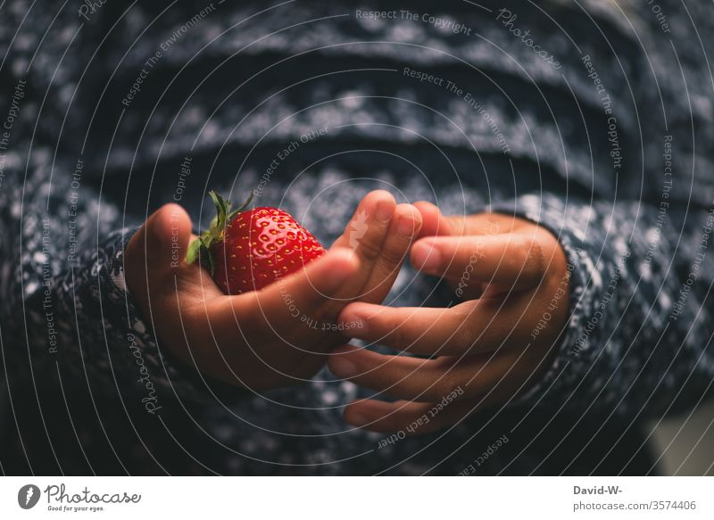 meine Erdbeere Mädchen Kind Erdbeeren festhalten rot saftig lecker Obst Gesunde Ernährung gesund Lebensmittel Frucht fruchtig Gesundheit Ernte Farbfoto frisch