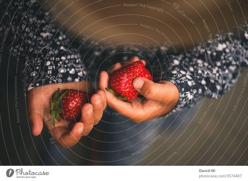 kleines Kind hält zwei Erdbeeren in den Händen Mädchen festhalten rot saftig lecker Obst Gesunde Ernährung gesund Lebensmittel Frucht fruchtig Gesundheit Ernte