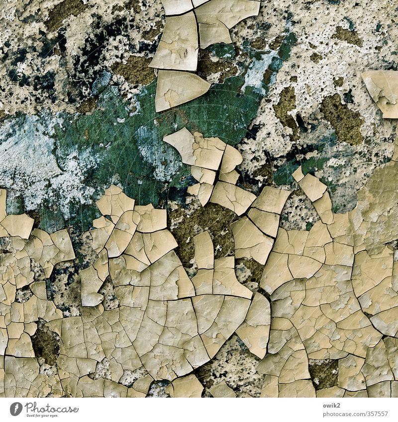 Wann kommt der Hausarzt? alt Farbe Wand Mauer Fassade dreckig trist Ecke Vergänglichkeit Wandel & Veränderung Textfreiraum Spuren verfallen Teile u. Stücke Verfall Riss