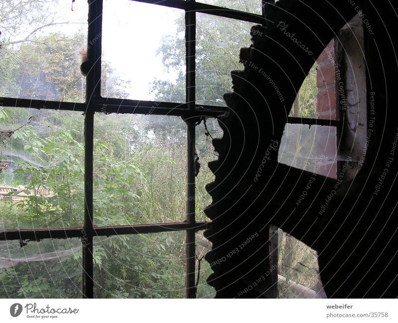 großes Zahnrad alt Architektur Industriefotografie historisch Mühle