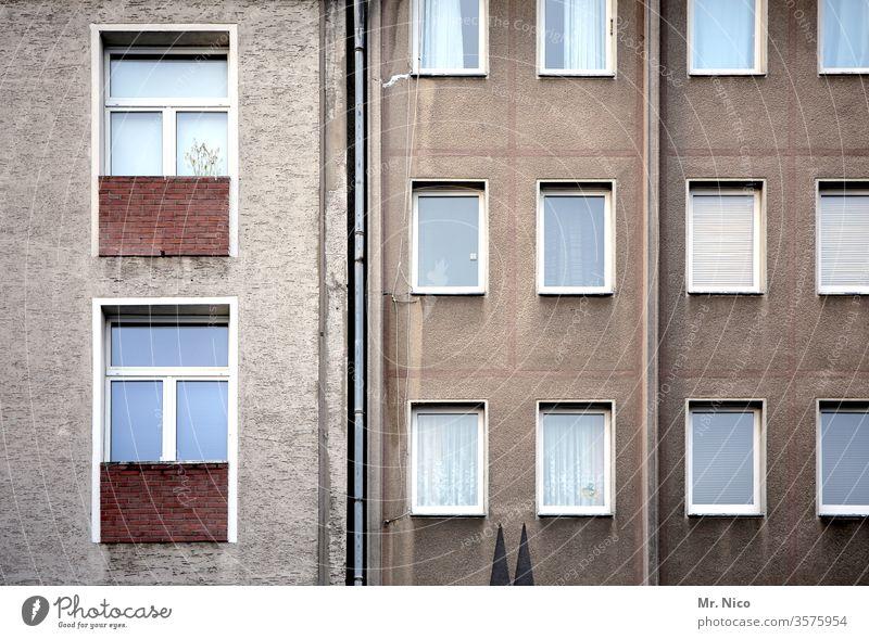 Kölsche I Kunst am Bau Fassade Haus Architektur Fenster Gebäude Hochhaus Stadt Häusliches Leben Domspitzen Köln Wahrzeichen Wohnhaus mietshaus Gardine Bauwerk
