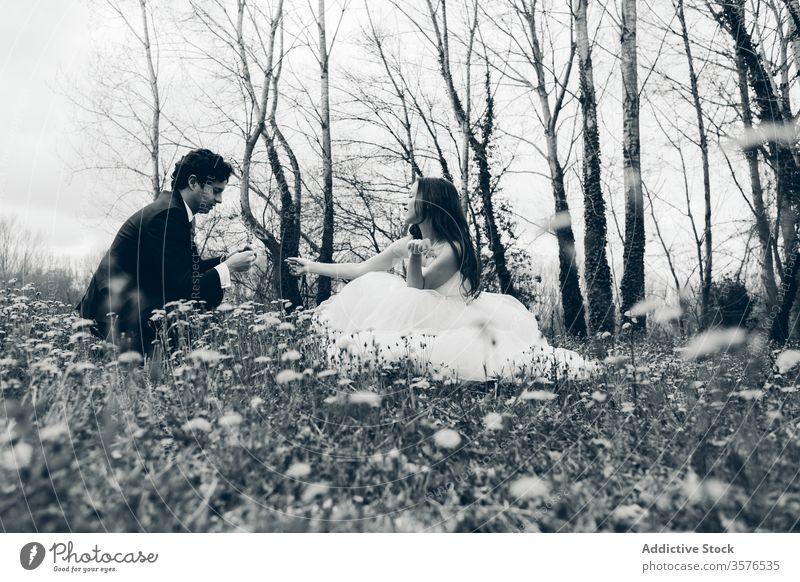Neuvermähltes verliebtes Paar auf blühender Wiese Jungvermählter Hochzeit Blütezeit Blume geben striegeln Braut Löwenzahn Hochzeitstag genießen charmant heiter