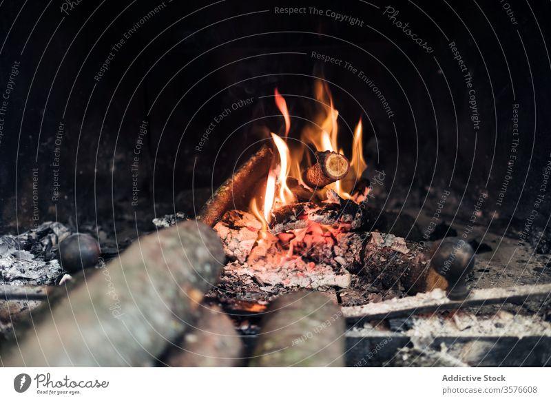 Verbrennen von Feuer und Holz im Kamin Feuerstelle Brandwunde Flamme Brennholz Freudenfeuer Rauch Asche glühen Licht hell erwärmen heiß brennbar Totholz dunkel