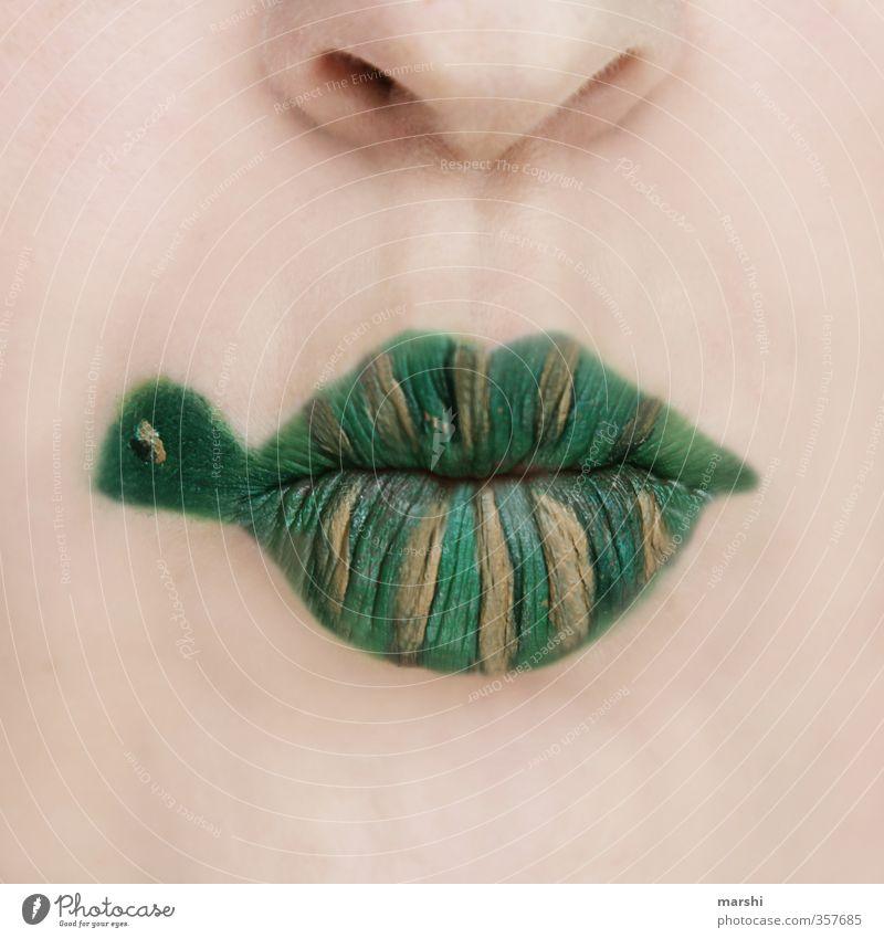 Panzerlippen Freizeit & Hobby Mensch maskulin feminin Kopf Gesicht Lippen 1 Tier Haustier grün Schildkröte Schminke geschminkt angemalt lustig Idee Farbfoto