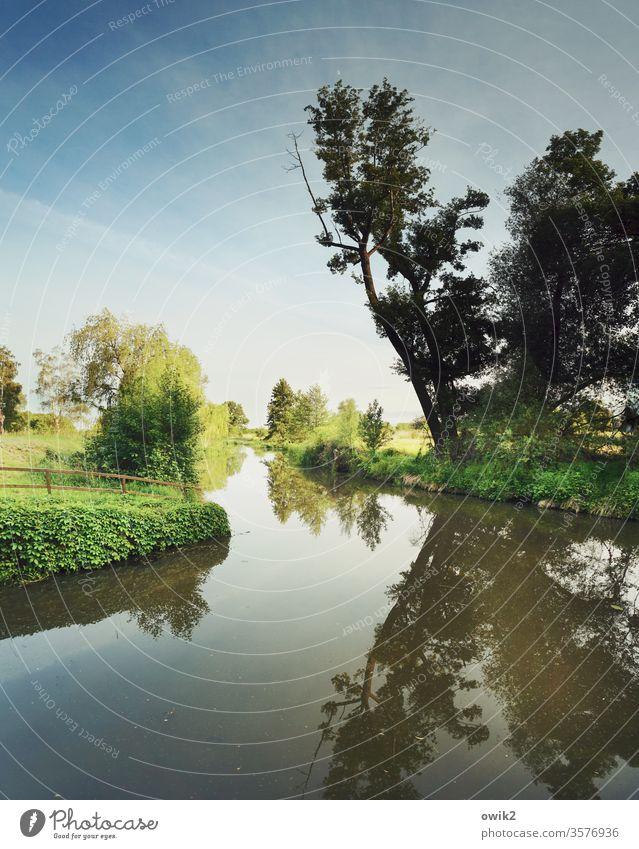 Kleiner Spreewald bei Wahrenbrück Baum Natur Landschaft draußen Außenaufnahme Horizont Himmel Fließgewässer fließend ruhig windstill Reflexion & Spiegelung