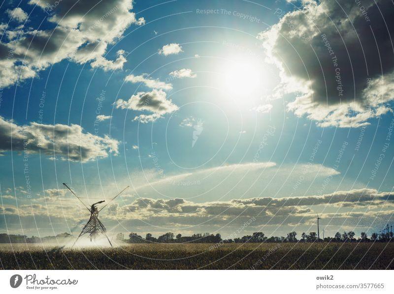 Regenmacher Bewässerung Landwirtschaft Feld Acker Horizont Himmel Wolken Wasser Beregnungsanlage Landschaft Außenaufnahme Umwelt Farbfoto blau Ackerbau Natur