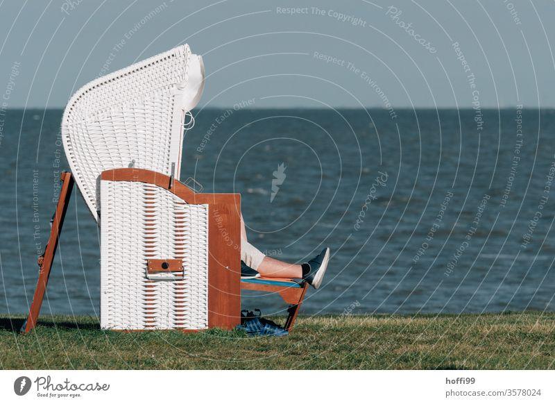 Entspannen bei Sonnenbad im Strandkorb am Meer entspannend entspannte Stimmung Sand Ostsee Ferien & Urlaub & Reisen Küste Sommer Erholung Himmel Wasser Nordsee