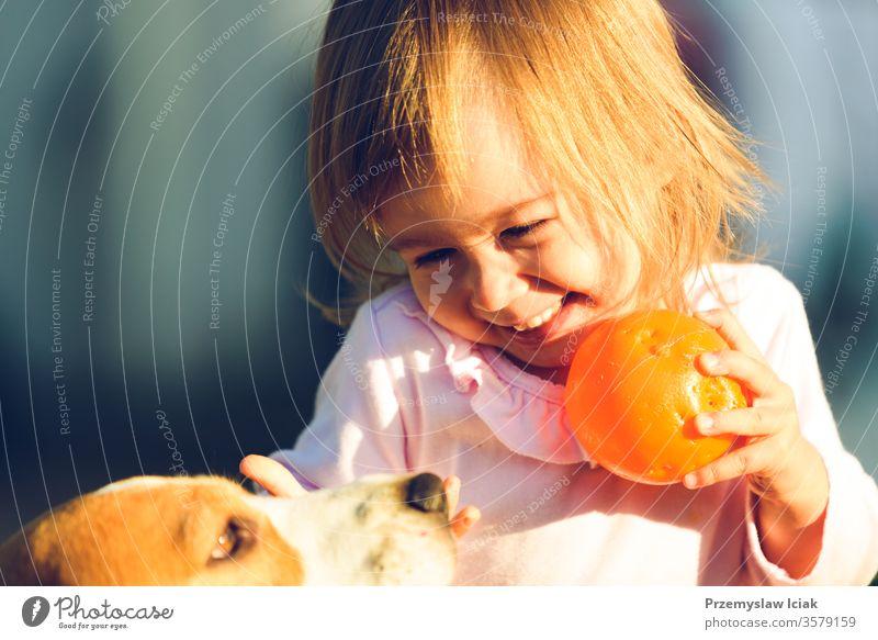 Kleines Mädchen, das an einem sonnigen Tag im Garten mit seinem besten Freund, dem Beagle-Hund, spielt. Kind Familie im Freien Sommer bezaubernd Tier Herbst