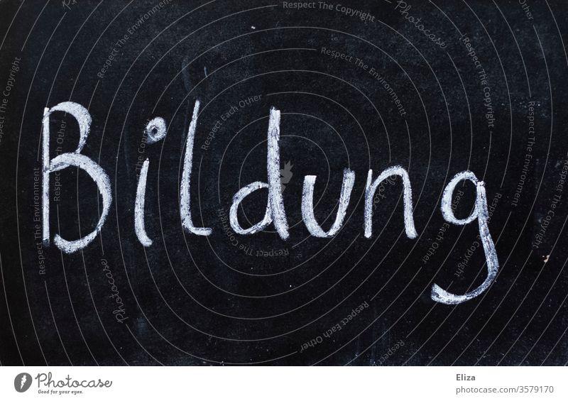Tafel auf der mit Kreide das Wort Bildung geschrieben steht Schulbildung Schule Schulunterricht lernen wichtig Wissen schwarz weiß Schrift Buchstaben