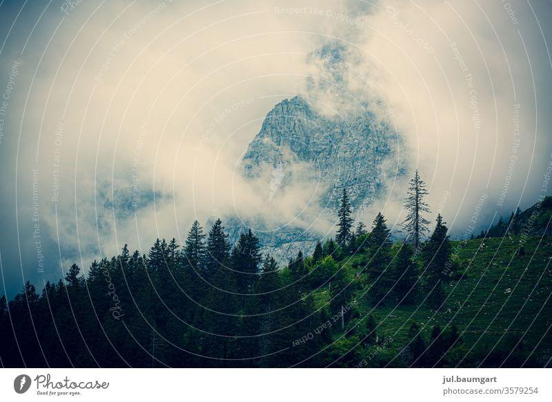 Morgennebel in den Bergen Berge u. Gebirge Wald Nebel Schleier Stimmung mystisch Wolken