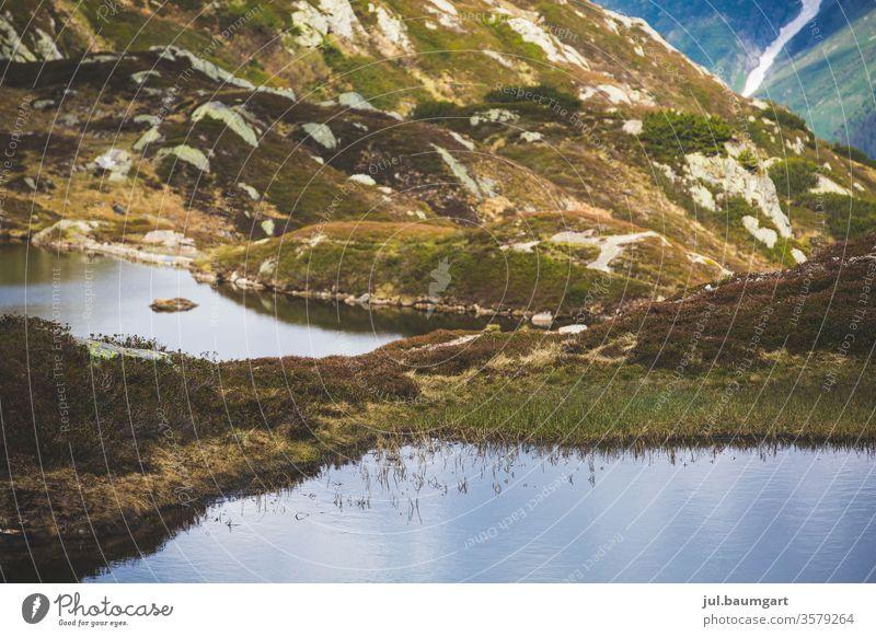 Bergsee im Stillen See Berge u. Gebirge stilles Wasser Natur Ruhe Stillstand grün