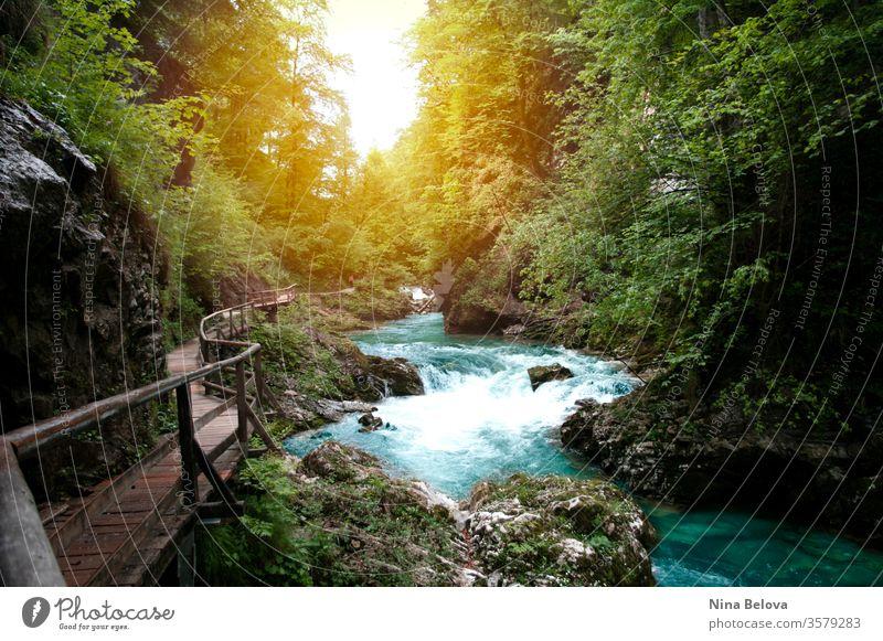 Wunderschöne Aussicht auf den Bergfluss, Sonnenlicht durch die Bäume, Reisen in Slowenien, Vintgar. Wandern in Europa. Blick auf den Berg Fluss reisend