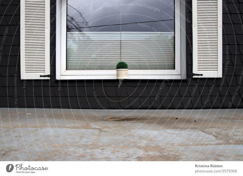fenster mit blumentopf über dem vordach fensterbank pflanze schieferfassade schieferverkleidung fensterläden fensterladen schieferschindeln rollo klemmrollo