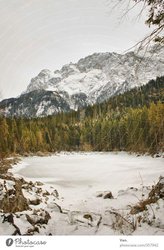 Alpenweiß Berge u. Gebirge wandern Natur Landschaft Himmel Wolken Winter Baum Wald Felsen Teich kalt grün gefroren Eis Farbfoto Gedeckte Farben Außenaufnahme