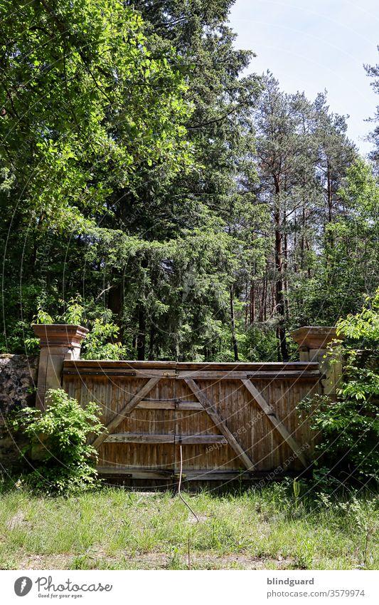 Lock Down ... all doors closed and safe Toor Eingang Ausgang Wand Mittelalter Mauer Schutz Wall Eingrenzung Ausgrenzung Menschenleer Wald Natur Flora
